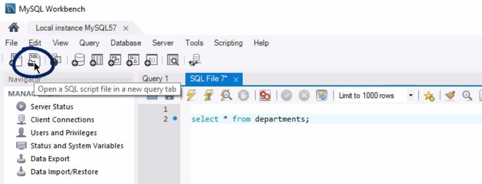 Second button opens a SQL script file in a new query