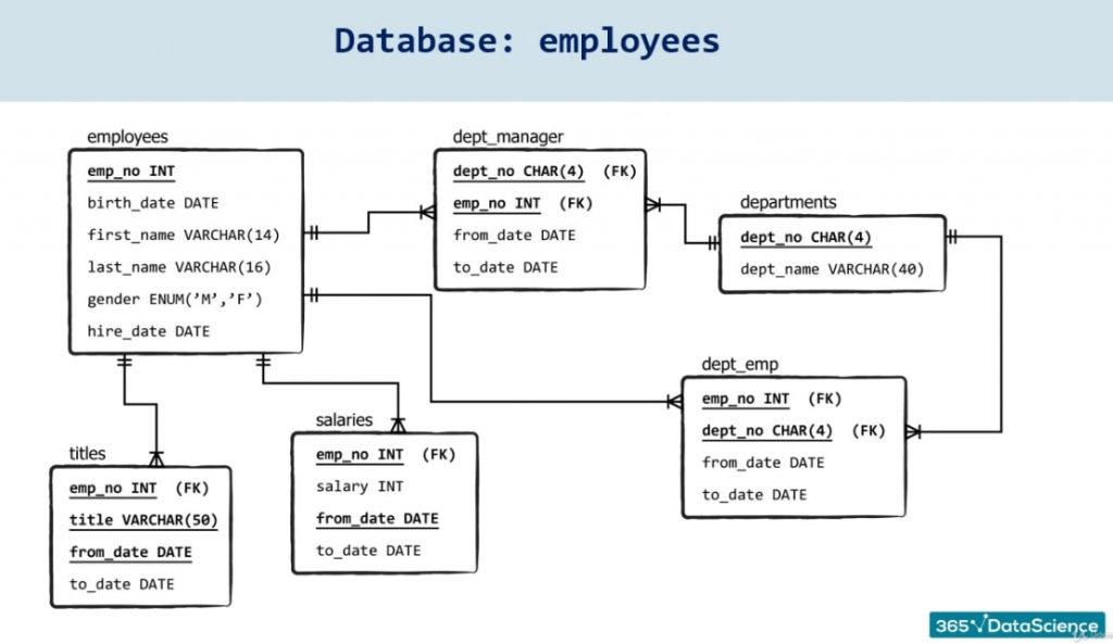 database employees, set up a database in sql