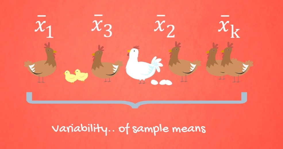 Variability of sample means