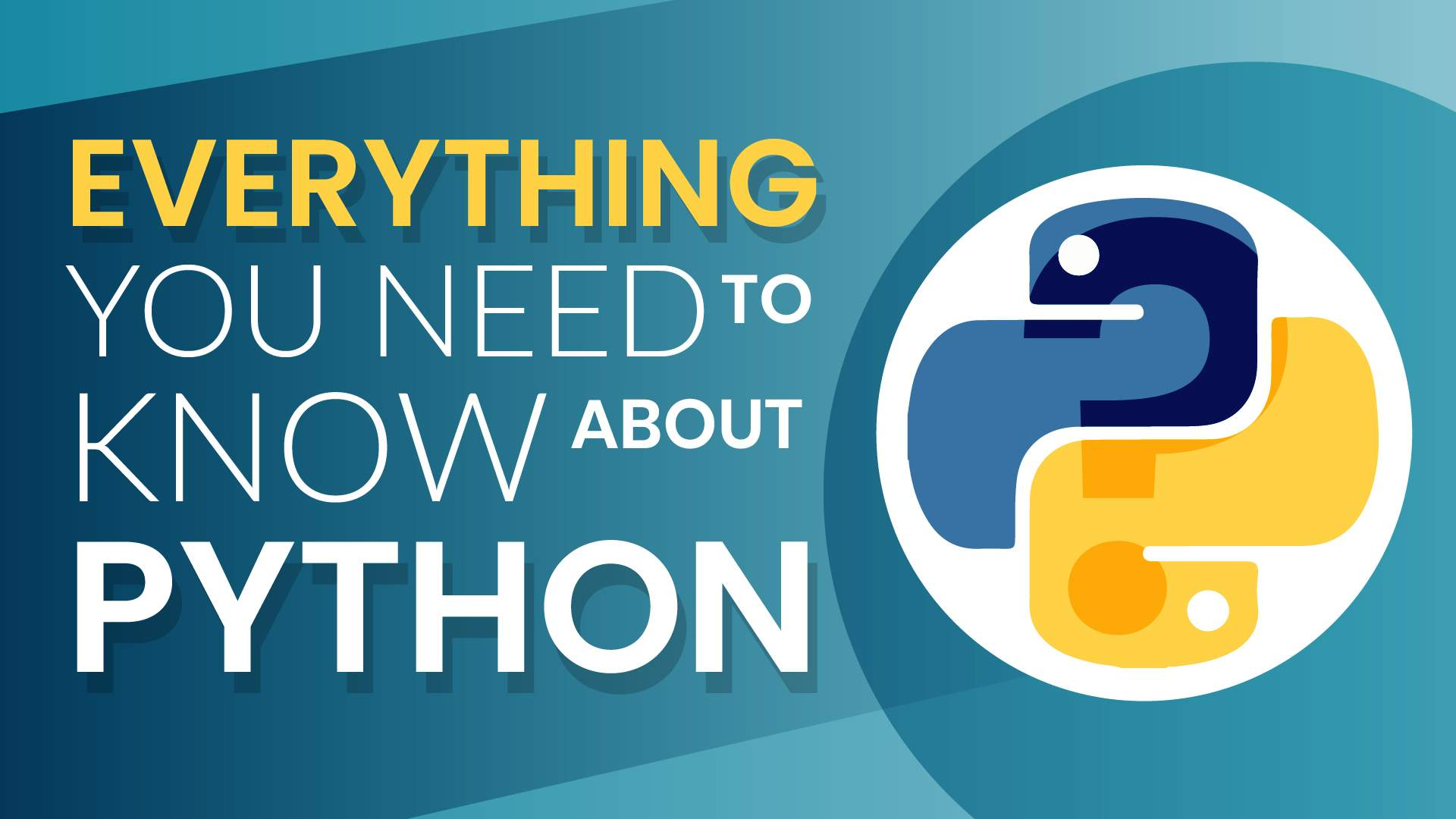 Learning Python Programming - Everything You Should Know