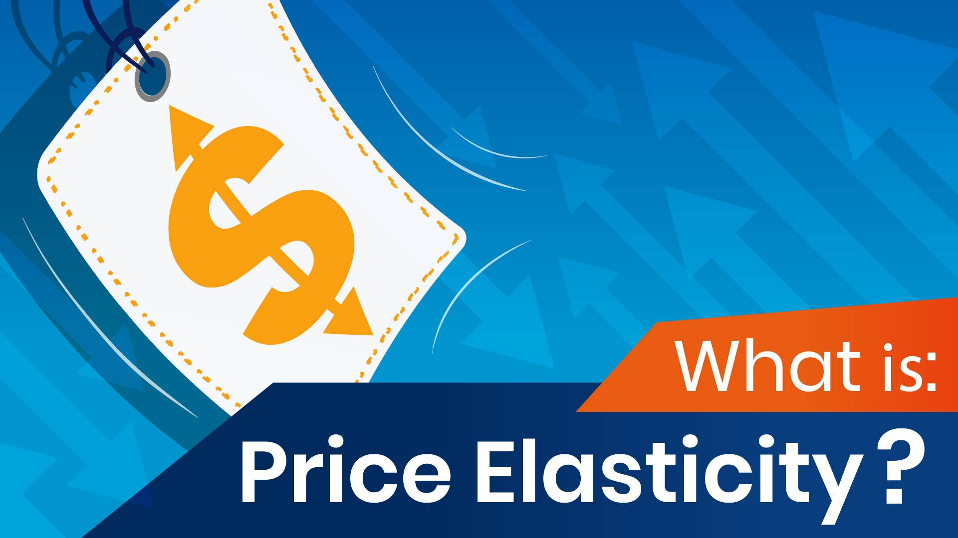 What Is Price Elasticity 365 Data Science