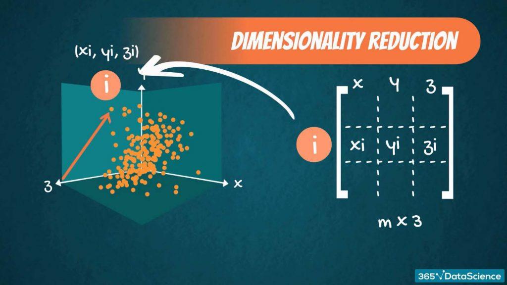 linear algebra, dimensionality reduction, xyz