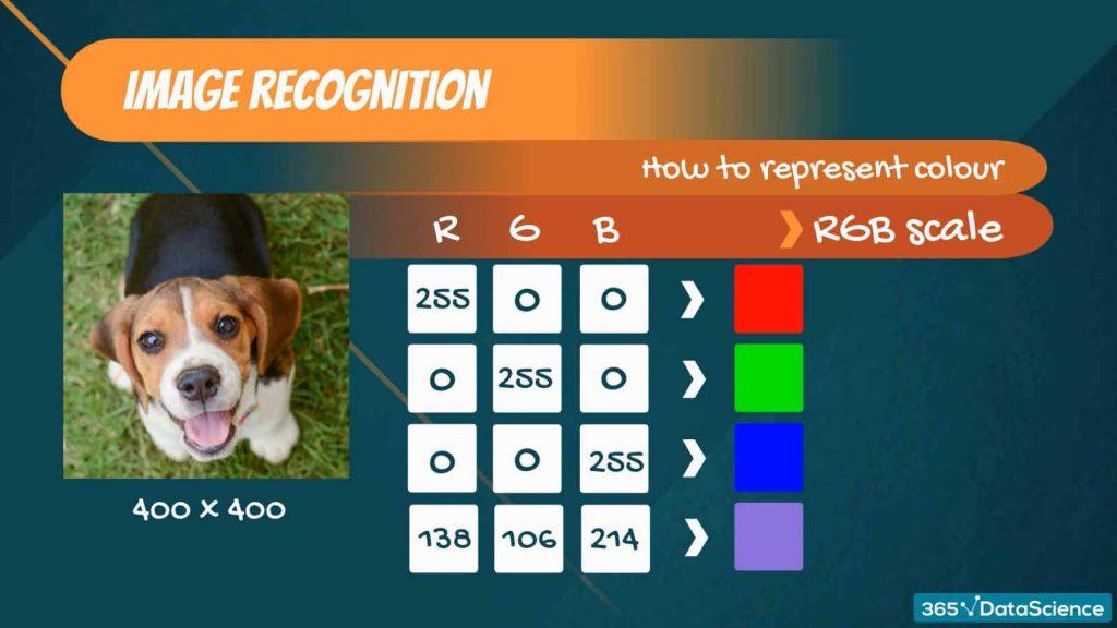 linear algebra, image recognition, color image