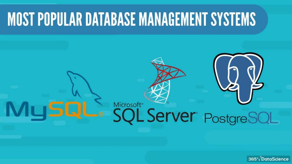 best database management systems