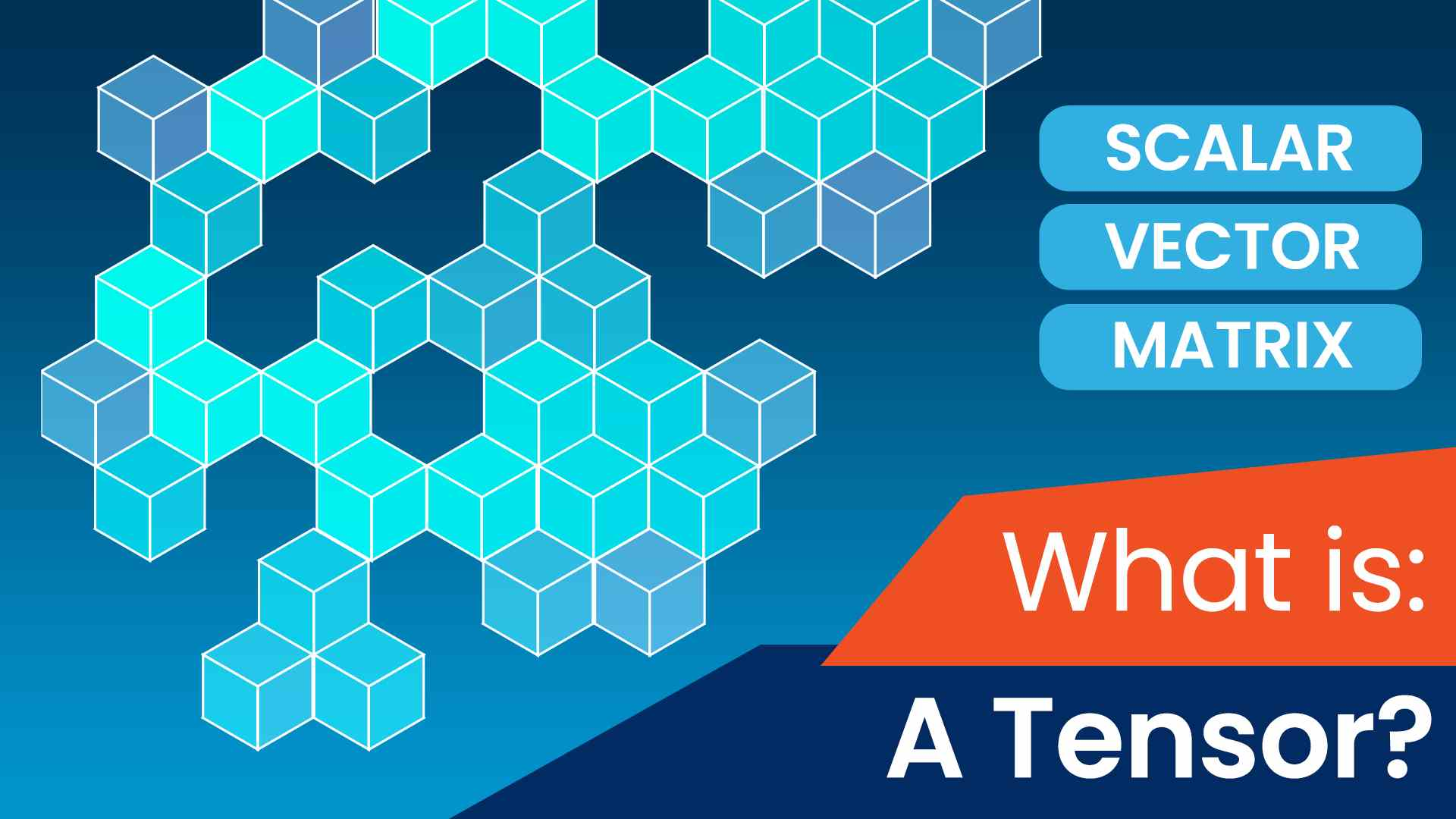 What Is a Tensor?